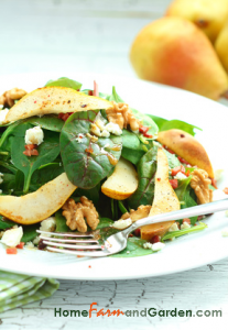 Pear spinach salad
