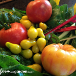 Gardening from a Clean Slate