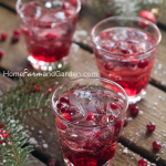 Lime-Cranberry Vodka Spritzer