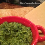 Fresh Basil Pesto with Toasted Pine Nuts