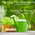 Picking the Perfect Spot for Your Potager