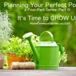 Helping Your Potager GROW UP!