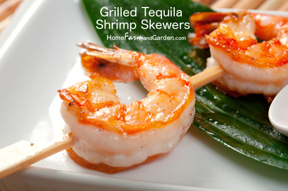 Grilled Tequila Shrimp Skewers