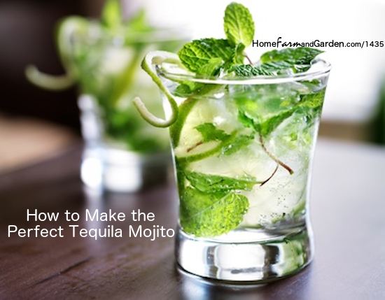 how to make the perfect tequila mojito