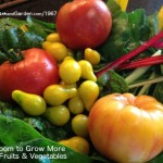 home grown garden fresh vegetables