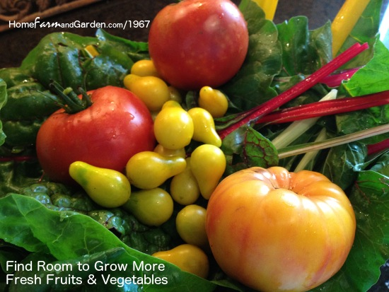 home grown garden fresh vegetables